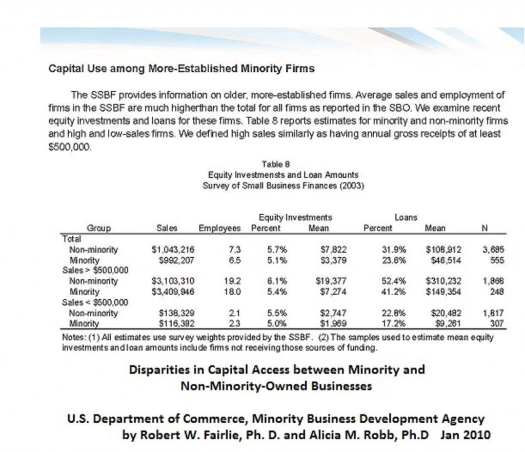 Disparities in Capital Access Report 2010